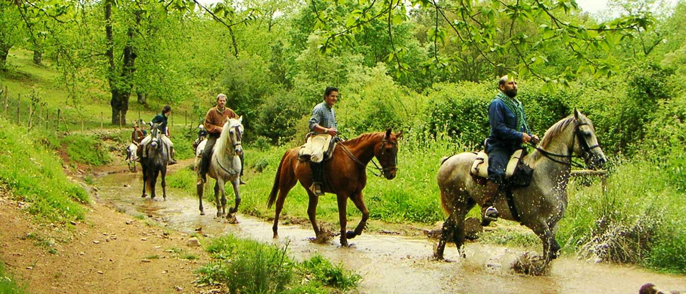 paseo-a-caballos